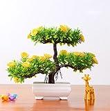 JingweiSemillas de bienvenida 10Pcs árbol de pino, plantas ornamentales, semillas de árboles de hoja perenne bonsai bonsai de interior semillas de plantas protección contra las radiaciones , flowers yellow