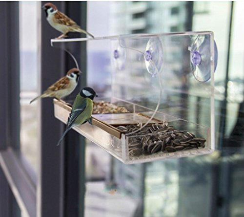 Homeself Clear Window Mounted Bird Feeder,Holds Bird Seed & Wild Birds - Clear, Removable Tray, Drain Holes, 3 Heavy Duty Suction Cups, Best Gift For Bird Lovers, Kids & Pets