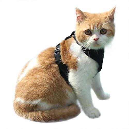 EXPAWLORER Arnés para Gato a Prueba de Escape, Malla Suave Ajustable para pasear a Mascotas