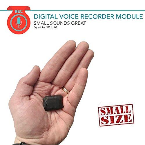 Mini Spia Registratore Vocale Digitale Professionale Suono HQ 1536 Kbps e Attivazione vocale |...