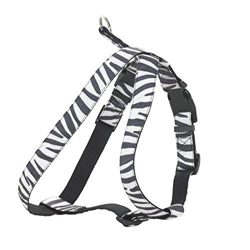 CHAPUIS SELLERIE SLA390 Arnés Ajustable para Perro y Gato - Arnés Aterciopelado con Estampado de Cebra - Ancho 10 mm - Dimensiones: 20-35 cm - Talla XS