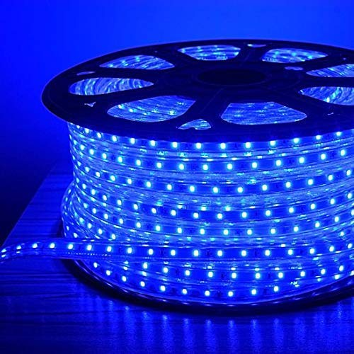Errol LED Strip Rope Light,Water Proof,Decorative led Light with Adapter. (Blue, 10 Meter)