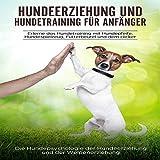 Hundeerziehung und Hundetraining für Anfänger: Erlerne das Hundetraining mit Hundepfeife, Hundespielzeug, Futterbeutel und dem Clicker