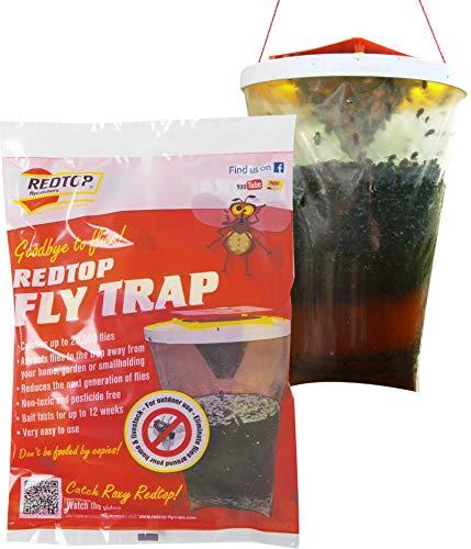 Red Top Fly Traps Trappola per Mosche Originale Top
