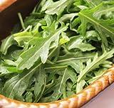 Roquette - Semences bio AgrosemenS
