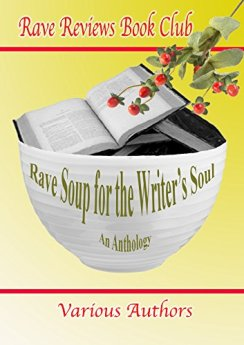 RAVE SOUP FOR THE WRITER'S SOUL Anthology by [Jules, Nonnie, Kent, Harmony, Hand, Marlena, Rossis, Nicholas, Weeks, Beem, Borders, Bruce A., Fioravanti, John, Abbott, Michelle, Various Other Authors]