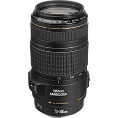 Canon EF 70-300mm f4-5.6 IS USM - Objetivo (15/10, 1.5m, Micro USM, 7.65 cm, 5.8 cm) [importado]