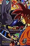 La battaglia degli dei. Dragon Ball Z