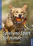 Spiel und Sport für Hunde: Action, Tricks und Schnüffelspaß (Praxiswissen Hund)