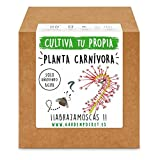 Garden Pocket - Kit cultivo PLANTA CARNÍVORA