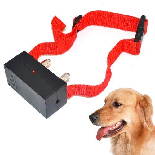Futaba Automatic Voice Activated Anti Bark Training Dog Collar (Red, Medium)