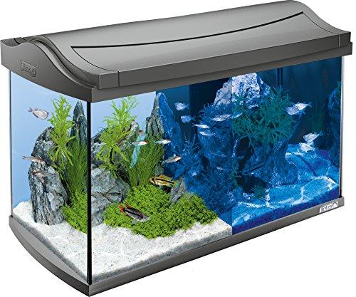 Tetra Acuario AquaArt LED 60L Set Completo 60 L