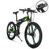 RICH BIT RT-860 250W 36V 12.8Ah Vélos électriques LCD Smart E-Bike 26 Pouces Pliant Bike