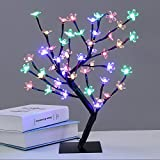 AtneP Metal 24 Led Tree Home Lighting(14x5-inch, Multicolour)