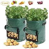 LOBKIN Set di 2 Vasi per Piante, per Patate e Patate, Carote & Pomodori, Sacchi per Piante Potato Grow Bag 7 Gallon Grow Borse Polietilene Impermeabili con Patta 35 * 45cm (Verde)