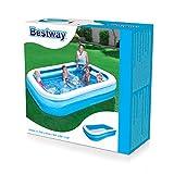 bestway family pool planschbecken eingepackt