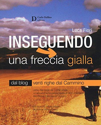 Inseguendo una freccia gialla. Verso Santiago de Compostela, un'emozionante passeggiata di 900 chilometri dai Pirenei francesi all'Oceano