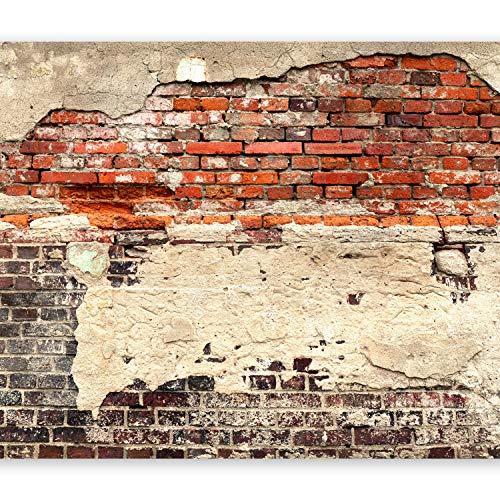murando - XXL Fototapete 500x280 cm - Größe Format - Vlies Tapete - Moderne Wanddeko - Design Tapete - Wandtapete - Wand Dekoration - Ziegel Ziegelstein f-A-0503-x-b