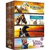 Coffret Cheval 4 DVD : Tornado l'étalon du désert + L'étalon noir + Whitney Brown + Le cheval de la victoire