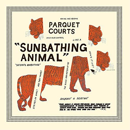 Sunbathing Animal + Content Na