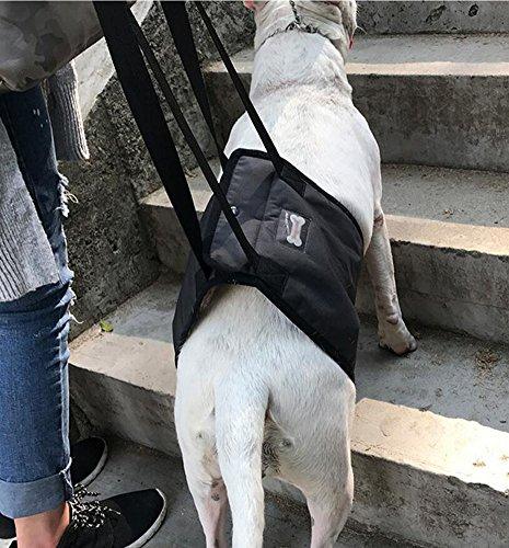 Ylen Arnés de Rehabilitación de Apoyo para Perros Eslinga de Ayuda Auxiliar for Mascotas Discapacitados Lesionados Ancianos