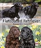 Flatcoated Retriever (Hunderassen)