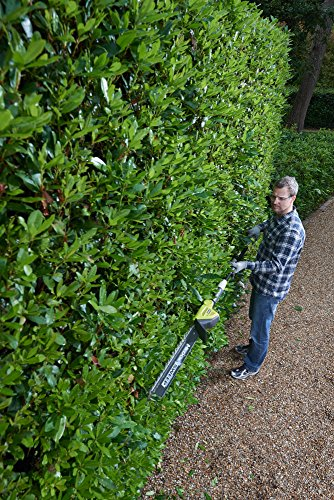 If your hedge is taller than average or if you just want a hedge trimmer that provides an unmatched reach, this Ryobi ONE+ 18v cordless pole hedge trimmer is an excellent choice and well worth considering.