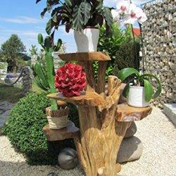 """floristikvergleich.de Blumenständer aus Holz 100cm mit 4 Ablagen Kaffeebaum """"Top Design"""""""