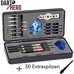 DARTHERO Dartset Komplettset | 3x Dartpfleile Steeldarts & Softdarts | Für Profis & Anfänger | 3x Nylon Shaft | 3x Barrel | 9x Flights | 3x Gewichte | 1x Tool | 30x extra Dartspitzen
