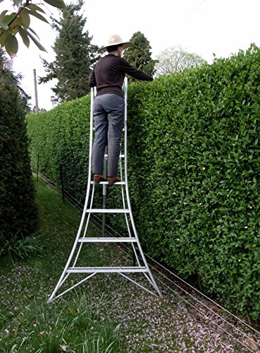 Gardening guru Monty Don described this tripod ladder as one of his favourite gardening tools. Indeed, the Niwaki 8' 2.4m Tripod Ladder is perfect for a range of tasks in the garden including trimming hedges. picking fruits, topiary work, and even DIY jobs involving that require working at height. In a densely vegetated area, the back leg can be placed deep into the crown of a tree for easy access of hard to reach spaces.