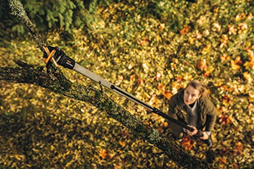 Perfect for both amateurs gardeners and professionals, this telescopic tree pruner will offer you years of service and with a very impressive 25 year warranty you also get the peace of mind of knowing it's a super quality product. Now it does have its limitations in terms of cutting diameter but for regular pruning it will make life much easier plus you do have the option to buy the pruner saw attachment separately. Its also worth mentioning that you can quickly replace the rope inside the pruner which is usually the first part to fail on most long reach pruners and cannot be fixed. With this model however it has been designed with this in mind. If we has to recommend just one model, this would have to be it.
