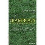 Des Bambous dans la surface de réparation: L'histoire vraie de l'Anglais qui a fait jouer au football un milliard de Chinois