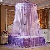 Moskitonetz Prinzessin Traum Schmetterling Kuppel mücken netz Doppelbett Reise With A Full Hanging Kit Durch GRD (lila)
