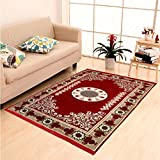 "Home Elite Ethnic Velvet Touch Abstract Chenille Carpet - 55""x80"", Maroon"