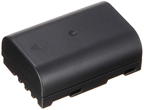 Panasonic バッテリーパック ルミックス DMW-BLF19
