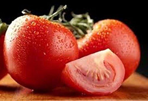 100 - 種子:クレオールトマト - 優れたトマトの風味を持っている トマト!誰ダット!