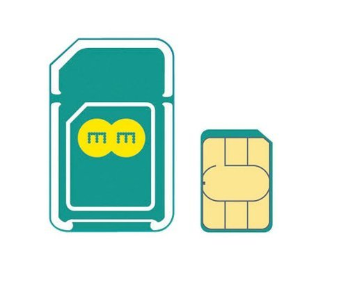 EE 4G SIM イギリス他ヨーロッパ各国対応【2GB / 30日タイプ】【並行輸入品】