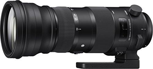 SIGMA 超望遠ズームレンズ Sports 150-600mm F5-6.3 DG OS HSM キヤノン用 フルサイズ対応 740542