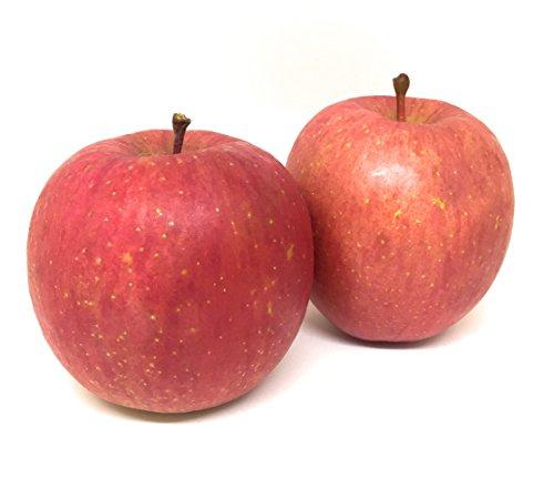青森県産 りんご『サンふじ』規格外・ご家庭用(5kg 13~20玉) 【りんご生産量日本一の青森県・弘前市産】訳あり