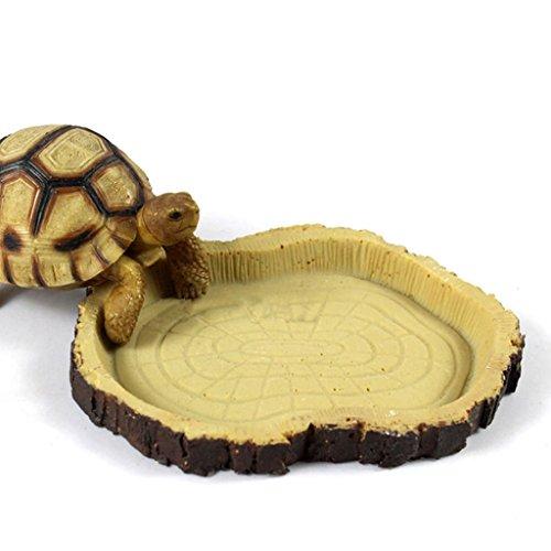 KOZEEY爬虫類 給餌 ボウル 食品 水樹脂 食器 ペット 飼育 亀 ヤモリ ヘビ