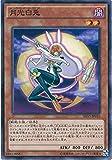 遊戯王カード SHVI-JP010 月光白兎 ノーマル 遊戯王アーク・ファイブ [シャイニング・ビクトリーズ]
