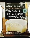ロッテ SWEETS SQUARE 白くてふわっふわクリーミィにとけゆくフロマージュアイス120ml ×24袋
