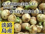 名手農園 淡路島 新たまねぎ 2017年産 新たまねぎ 【わけあり】 5kg(20~30個) 期間限定サービス価格で販売中!