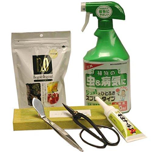 【初めての方に】盆栽道具セットを盆栽とセットでプレゼント