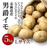 北海道産 男爵芋 Lサイズ 5kg詰め