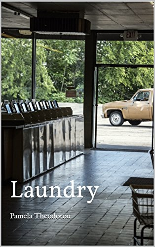 Laundry: Humanitas Media Publishing/MIPJ English Edition