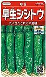 サカタのタネ 実咲野菜1600 早生シシトウ 翠臣 00921600