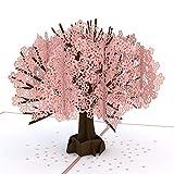 LovePop 社製 桜のポップアップカード 3Dカード 誕生日カード 春のお祝いカードに