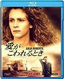 愛がこわれるとき [Blu-ray]