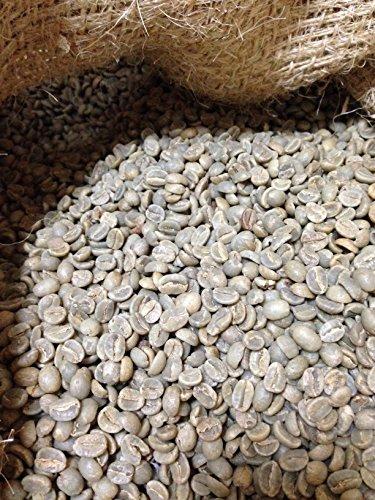 松屋珈琲 コーヒー生豆 タンザニア (キリマンジャロ)AA 1kg